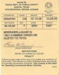 texas occupational drivers license cost